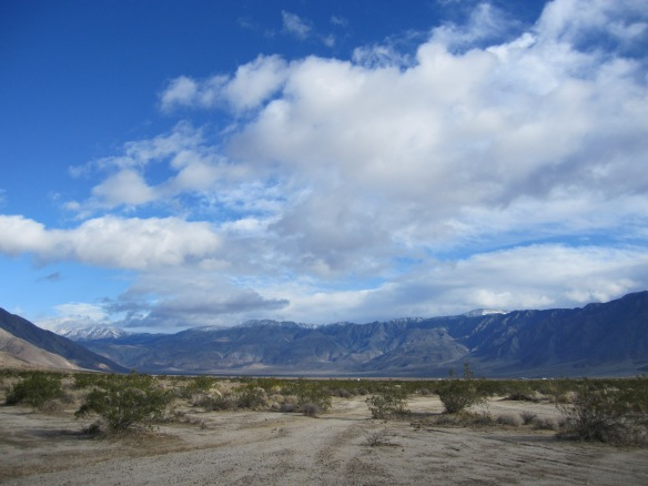 View from my Anza-Borrego site